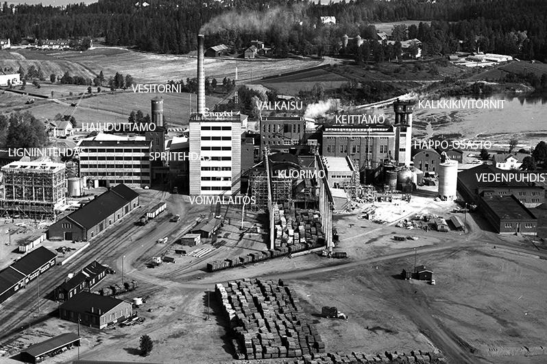Oy J.W. Enqvist Ab:n sulfiittiselluloosatehdas vuonna 1965. Kuva: Scanfoto. Vapriikin kuva-arkisto.
